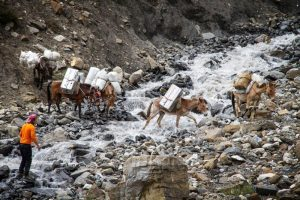 ZARGES sponsors the Everest 'Trail of Change' Expedition 4