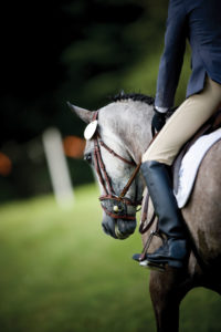 equestrian equipment storage